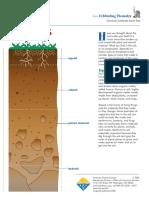 dynamic-soil