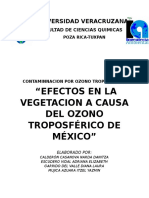 Efectos Negativos en La Vegetacion Por Ozono