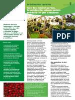 Horticultura Urbana y Periurbana