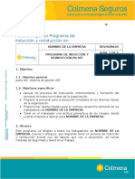 ANEXO 16. Programa de Induccion y Reinduccion en SST