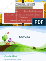 TEJIDO SANGUÍNEO.pdf