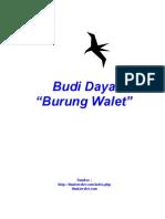 Budidaya Walet