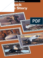 03  duck stamp story