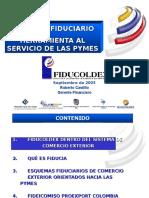 Roberto Castillo FIDUCOLDEX