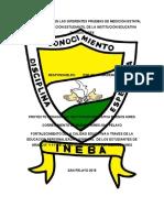 Propuesta Proyecto Pedagogico Educacion Personalizada Ineba 2015