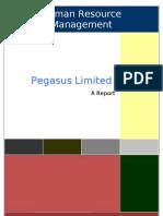 Pegasus Report HRM