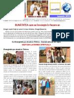 Foaie de Informare Ianuarie 2016 Madagascar