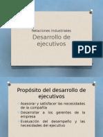 Desarrollo ejecutivo
