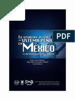 La Situación Actual Del Sistema Penal en México_ Sergio García Ramírez y Olga Islas de González Mariscal