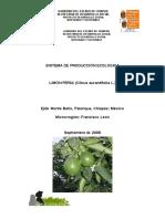 Sistema de Produccion SISTEMA DE PRODUCCIÓN ECOLÓGICA LIMÓN PERSA (Citrus aurantifolia L.)agroecologica Del Limon