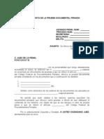 OFRECIMIENTO DE LA PRUEBA DOCUMENTAL PRIVADA