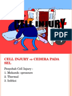 00cell Injury