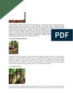 6 Tumbuhan Langka Di Indonesia