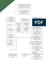 Patofisiologi Typhoid