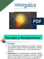 Bio Energetic A UTT