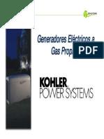 Generadores a Gas Propano