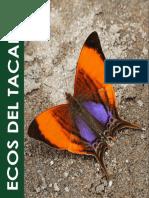 ECOS TACANA VF2.pdf