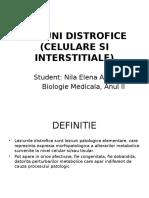 Leziuni Distrofice (Celulare Si Interstitiale)