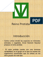 trabajodelreinoprotista-090419194404-phpapp01.pptx