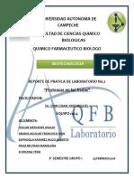 PRACTICA 2 Biotecnologia