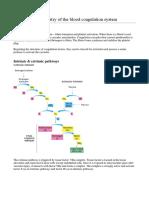 Biochemistry of the Blood Coagulation System