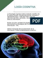Procesos basicos cognitivos