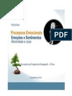 Processos Emocionais