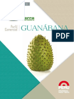 Guanabana-ok