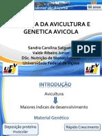 Historia DaHistória  Avicultura e Genetica Avicola