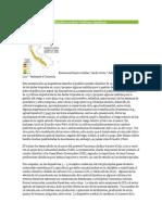 Pacto Del Cambio Climático Sobre Cultivos Andinos