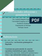 Enfermedades Infecciosas y Parasitarias II