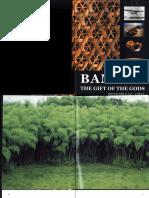 Bamboo - The Gift of the GODS - Oscar Hidalgo Lopez