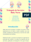 Triángulo de Servicio Baby Nurse