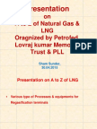 Natural Gas and LNG - Petrofed