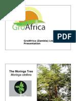 GroAfrica Moringa Presentation - Zambia