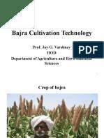 Bajra Cultivation Techniology-Prof JAY G.varshney
