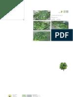 SeppHolzerProjekte2014.pdf
