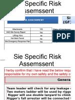 1029 MP PH II Risk Assessment ERP - Template Xlsx