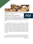 Informe Gral Economia Mundial