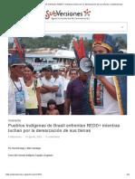 Pueblos indígenas de Brasil enfrentan REDD+ mientras luchan por la demarcación de sus tierras _ SubVersiones