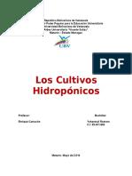 Los Cultivos de Hidroponía
