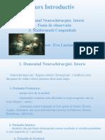 NEUROCHIR 1