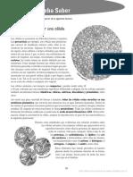 Biociencias 6 Prueba Saber
