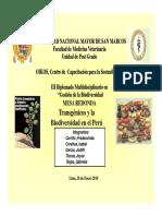 Transgenicos y Biodiversidad en El Peru ( Grupo Diplomado)