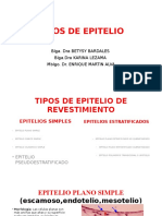 2.- Tipos de Epitelio