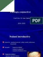 1.Patologia conjunctivei