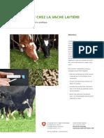 Acetonemie Vache Laitiere