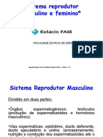 Sistema Reprodutor Histologia e Embriologia