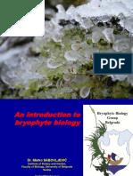 A Bryophyte Talk