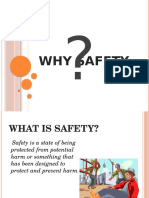 Why Safety?